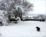 eerste sneeuw2