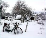 eerste sneeuw3