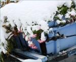 eerste sneeuw4