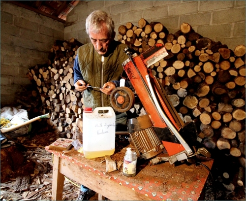 houtklover
