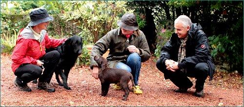 hondenbezoek