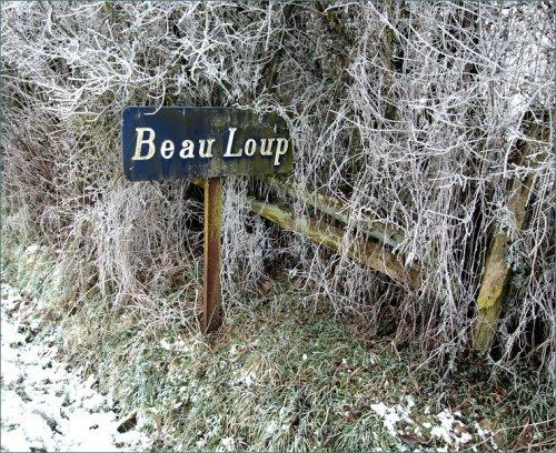 beau-loup