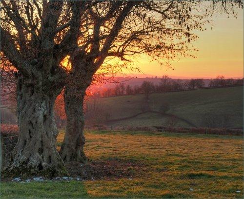 scherpe-foto-met-ondergaande-zon