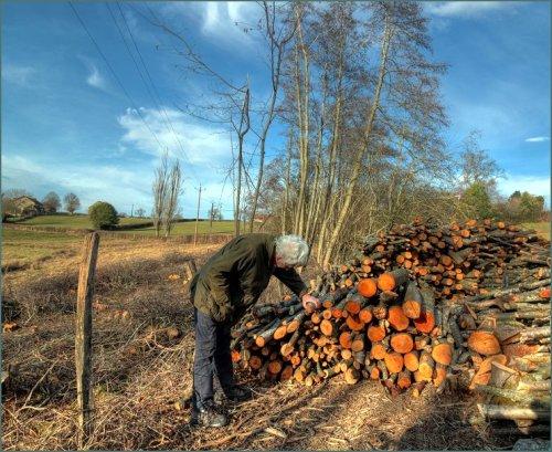 de-houtstapel-van-maurice